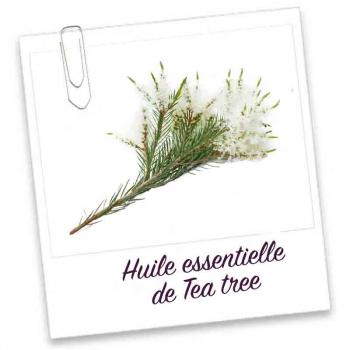 Huile Essentielle- TEA TREE