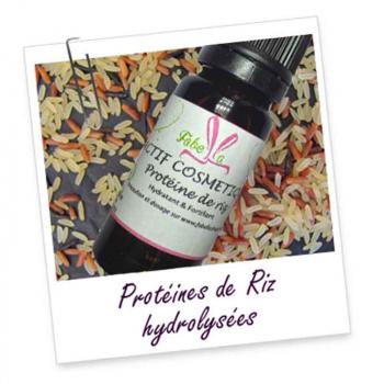 ACTIF COSMETIQUE- Proteines de riz hydrolysees